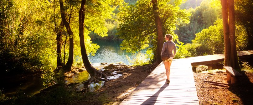 Photo of a woman walking along a raised path through a sunlit forest with a lake in the distance