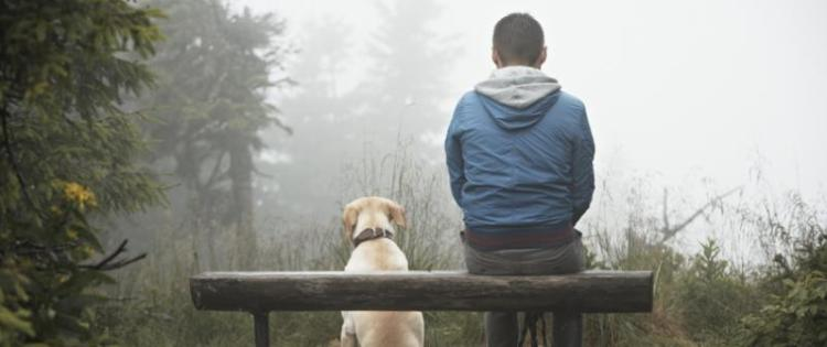 Photo of a man sitting on a bench in the forest with his yellow lab dog sitting next to him.