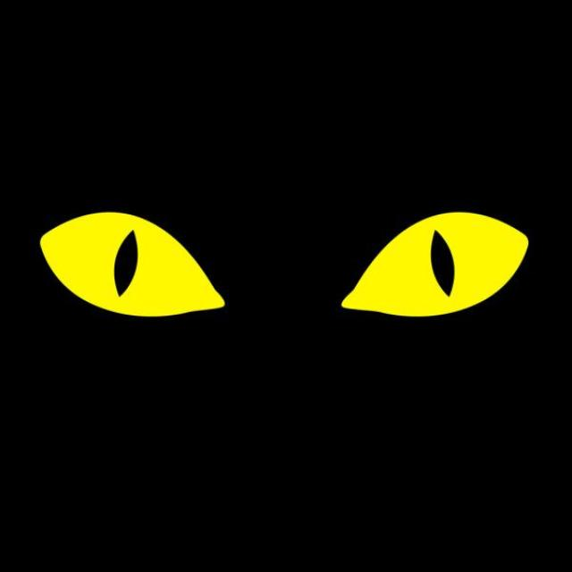 A black background with yellow cat eyes in it.