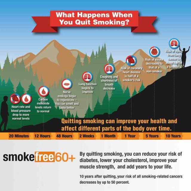 "An image of a timeline from 20 minutes to 10 years titled, ""What happens when you quit smoking?"" advertising Smokefree 60+. Captions include, ""By quitting smoking, you can reduce your risk of diabetes, lower your cholesterol, improve your muscle strencth, and add years to your life. 10 years after quitting, your risk of all smoking-related cancers decreases by up to 50 percent."""