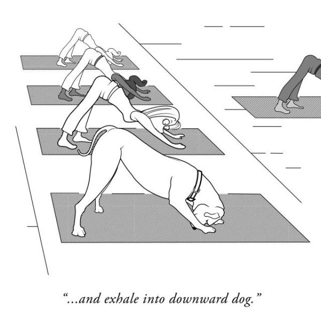 "Comic of several participants in a yoga class. One woman is looking surprised at the front of the class, where a dog is doing the Downward Dog yoga pose. Caption says, ""... and exhale into downward dog."""